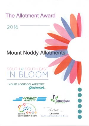 The Allotment Award 2016
